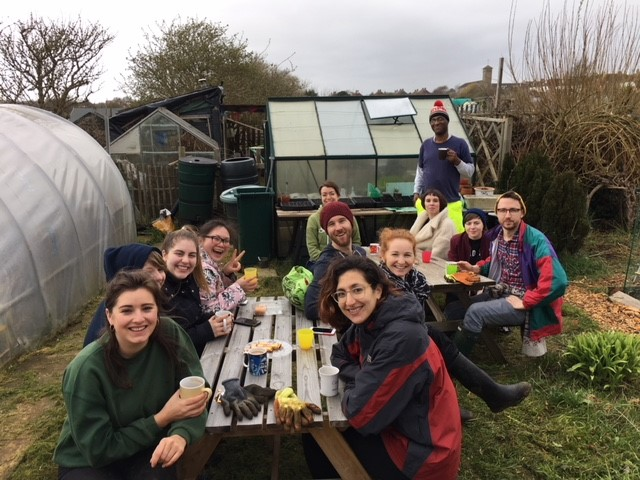 Volunteering at our community allotment: INTO transforms our south plot