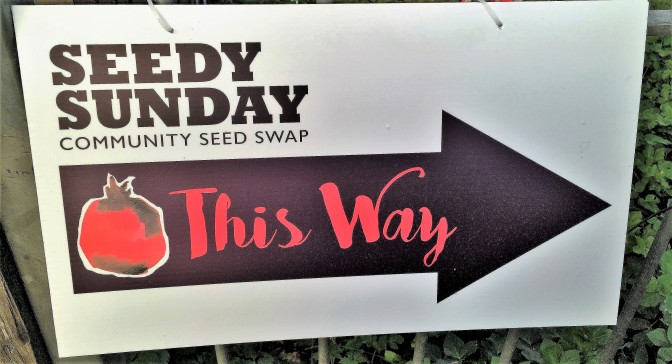 Seedy Sunday is tomorrow!