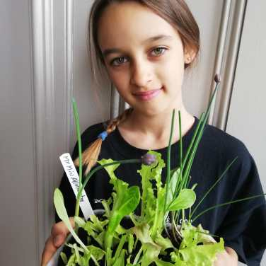 Beba Watts-Emirali, aged ten, with a mini-allotment