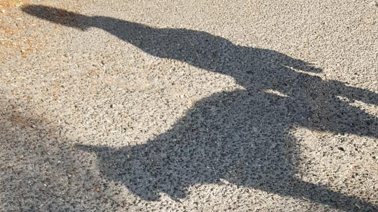 Shadowg